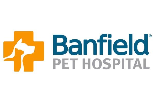 Executive Search Banfield Logo