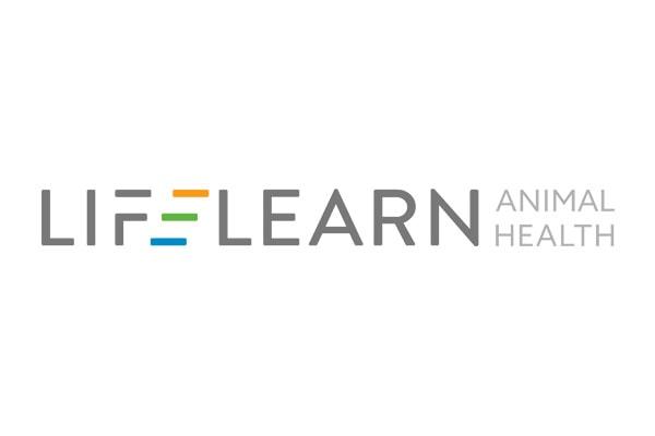 Executive Search Lifelearn Logo