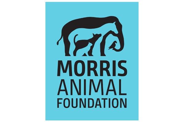 Executive Search Morris Animal Foundation Logo