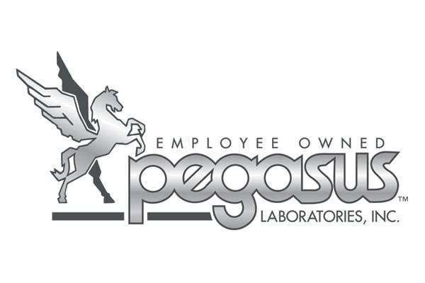 Executive Search Pegasus Labs Logo