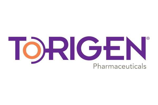 Executive Search Torigen Logo