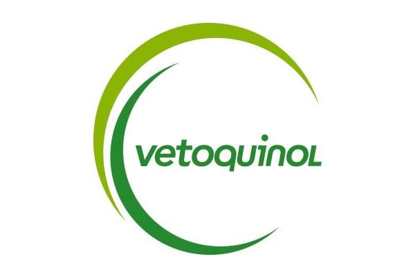 Executive Search Vetoquinol Logo